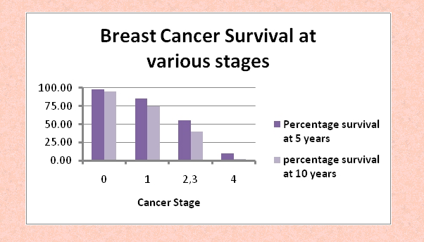 Breast cancer survival by stage 2